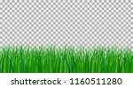 vector illustration of green...   Shutterstock .eps vector #1160511280