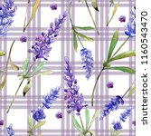 watercolor purple lavender... | Shutterstock . vector #1160543470