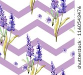 watercolor purple lavender... | Shutterstock . vector #1160543476