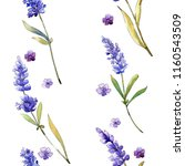 watercolor purple lavender... | Shutterstock . vector #1160543509