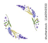watercolor purple lavender... | Shutterstock . vector #1160543533