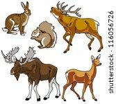 set of animals wild beasts... | Shutterstock .eps vector #116056726