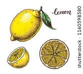 lemon hand drawn vector... | Shutterstock .eps vector #1160598580