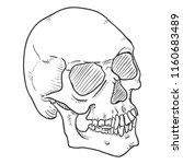 vector single sketch...   Shutterstock .eps vector #1160683489