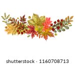autumnal twigs and leaves... | Shutterstock . vector #1160708713