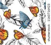 exotic butterflies wild insect... | Shutterstock . vector #1160716423