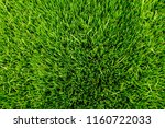 beautiful green grass field for ... | Shutterstock . vector #1160722033