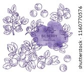 collection of bilberry  berries ... | Shutterstock .eps vector #1160770576