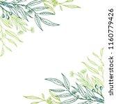 vector eucalyptus hand drawn... | Shutterstock .eps vector #1160779426
