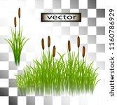 Vector Illustration Of Grass...