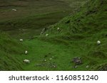 traditional sheep farming on... | Shutterstock . vector #1160851240