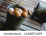 basket of freshly picked eggs | Shutterstock . vector #1160871349