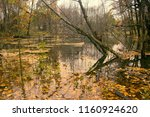 abandoned old park with a pond  ... | Shutterstock . vector #1160924620