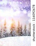 beautiful winter landscape with ... | Shutterstock . vector #116092678
