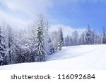 beautiful winter landscape with ... | Shutterstock . vector #116092684
