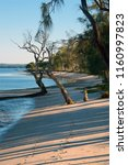 early morning on bribie island  ... | Shutterstock . vector #1160997823