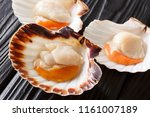 seafood background with fresh... | Shutterstock . vector #1161007189