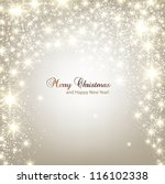 elegant christmas background... | Shutterstock .eps vector #116102338
