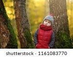 little boy during stroll in the ...   Shutterstock . vector #1161083770