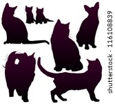 Stock vector vector silhouettes of cats for your design 116108839