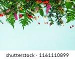 ingredients of herbal... | Shutterstock . vector #1161110899