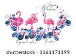 Paradise Flamingo Flowers ...