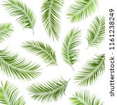 set with fresh green palm... | Shutterstock . vector #1161238249