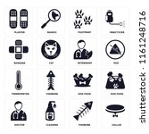 set of 16 icons such as collar  ...