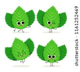 mint. cute cartoon herb vector... | Shutterstock .eps vector #1161252469