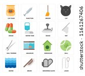 set of 16 icons such as leash ...