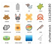 set of 16 icons such as net ...