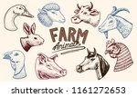 farm animals. head of a... | Shutterstock .eps vector #1161272653