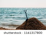 a scapula in the sand on the... | Shutterstock . vector #1161317800