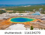 grand prismatic spring in... | Shutterstock . vector #116134270