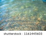 seabed from small pebbles... | Shutterstock . vector #1161445603