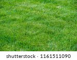 urban photography  a lawn is an ... | Shutterstock . vector #1161511090