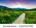 a morning sunrise scene on one...   Shutterstock . vector #1161531700
