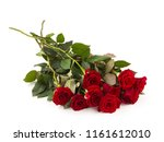 Stock photo bright red roses on a white background 1161612010