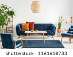 blue wooden armchairs and couch ... | Shutterstock . vector #1161618733