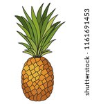 pineapple fresh fruit icon | Shutterstock .eps vector #1161691453