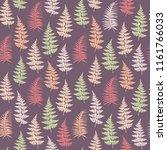 fern frond herbs  tropical... | Shutterstock .eps vector #1161766033