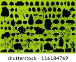 nature tree  bush  scrub  palm... | Shutterstock .eps vector #116184769