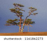 lonely shamanic pine with... | Shutterstock . vector #1161862273