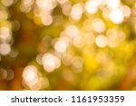 background natural sunlight.... | Shutterstock . vector #1161953359