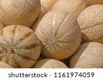 close up of melons on market | Shutterstock . vector #1161974059