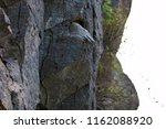 rock wall texture | Shutterstock . vector #1162088920