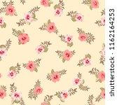 elegant gentle trendy pattern... | Shutterstock . vector #1162164253