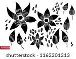 vector set of hand drawing wild ... | Shutterstock .eps vector #1162201213