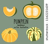 A Set Of  Handdrawn Pumpkins....