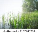 mist sky fog lake reflections... | Shutterstock . vector #1162285933